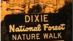 Ein alter Super8-Schmalfilm von 1983. Digitalisiert ohne Bearbeitung vom Studio W. Schröder.  Nationalparks in USA. Mesa Verde/Arches, Lake Powell, Las Vegas etc.